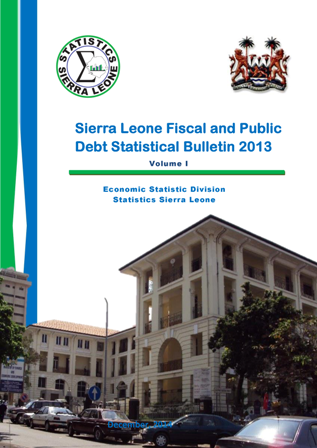 fiscal and public debt statistical bulletin 2013 report cover