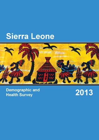 demographic and health survey 2013 report cover